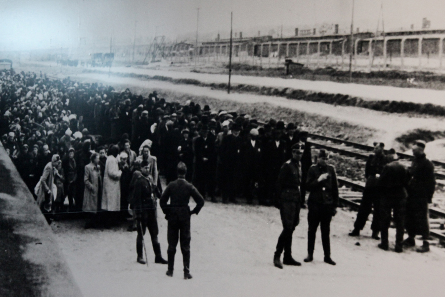 Gallery | Medicine After The Holocaust